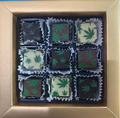 CBD Chocolate Squares 9 Piece Box